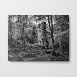 ruined mill in the woods Metal Print