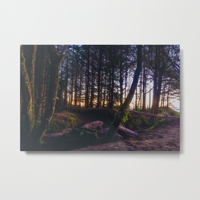 Wooded Tofino Metal Print