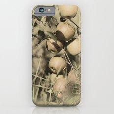 Fresh apples on the tree in vintage look Slim Case iPhone 6s
