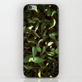 Leaves iPhone Skin