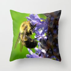 Bee all you can Bee Throw Pillow