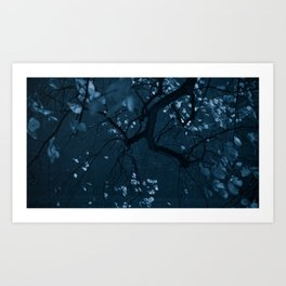 fall night Art Print