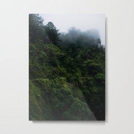 Road to Hana Metal Print