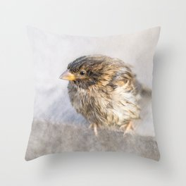 Sparrow - Faulty forecast Throw Pillow