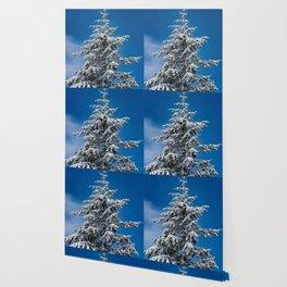 Winter Forest Fir Tree Snow IX - Nature Photography Wallpaper