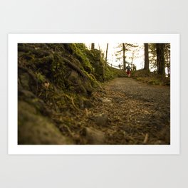 Caminos de Oregon Art Print