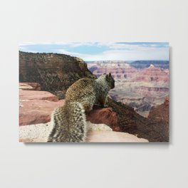Squirrel Overlooking Grand Canyon Metal Print