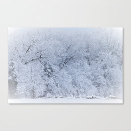 First Snow Fall Fresh Snow on Trees Nature Photography ~ Winter Hush Canvas Print