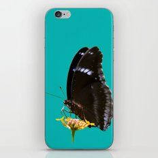 Butterfly (1) iPhone & iPod Skin