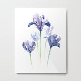 Watercolor iris print Metal Print