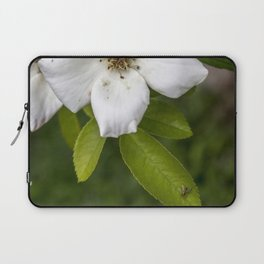Fly By Laptop Sleeve