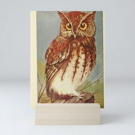 Screech Owl Mini Art Print