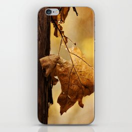 The Parting of Ways iPhone Skin