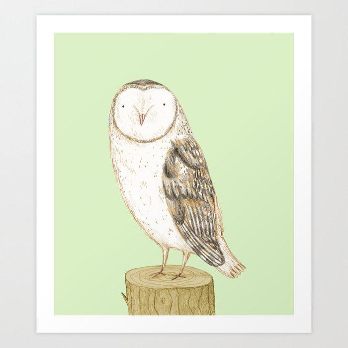 Barn Owl Kunstdrucke