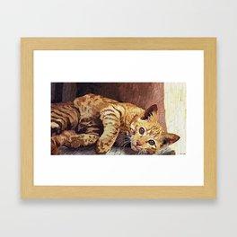 Morning cat Framed Art Print
