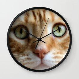 Ginger Mint Kitteh Wall Clock
