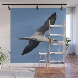 Sandwich Tern In Flight Vector Wall Mural