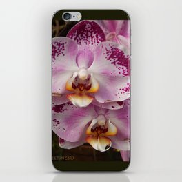 Pink Orchid Blossom from Mexico iPhone Skin