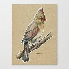 State Bird Series: Illinois - Cardinal Canvas Print