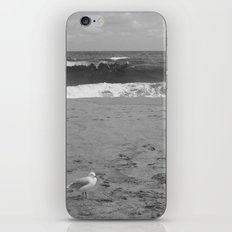 Peaceful Summer iPhone & iPod Skin