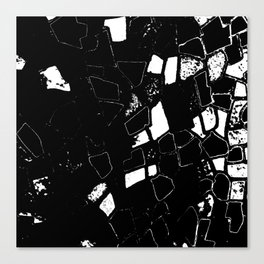 Accidental and On Purpose Canvas Print