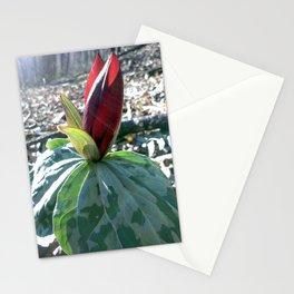 Toadshade Trillium, Spring Wildflower Print, Nature Art, Botanical Print Stationery Cards
