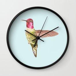 Calypte Wall Clock