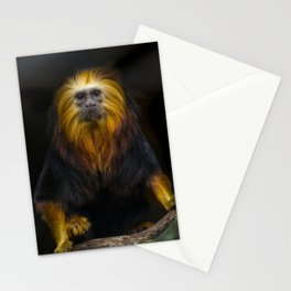 Lion Headed Tamarin Stationery Cards