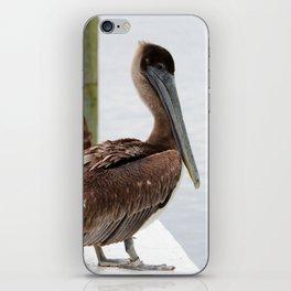 Pelican Waiting On Seafood iPhone Skin