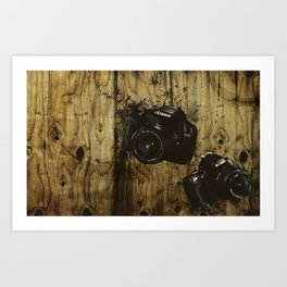 Equal Opportunity  Art Print