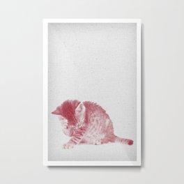 Kitten 01 Metal Print