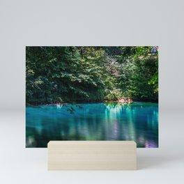 Smooth water - Blautopf Blaubeueren - Germany Mini Art Print