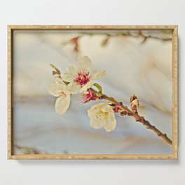 Almond Blossoms in the Wind Serving Tray