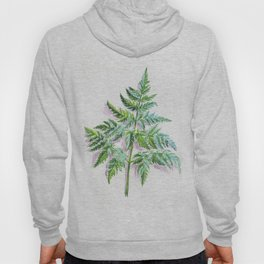 Fern leaf (watercolor on textured background) Hoody