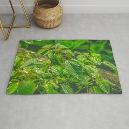 Forest Greenery Rug