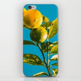 Limes iPhone Skin