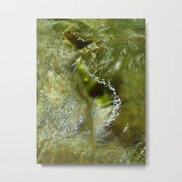 voda Metal Print