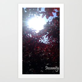 Insanity Photography Art Print