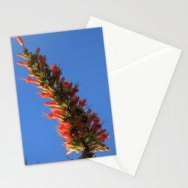 Ocotillo Hook Stationery Cards