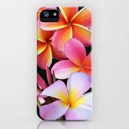 Pink Plumerias iPhone Case
