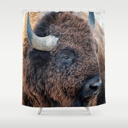 In The Presence Of Bison Shower Curtain