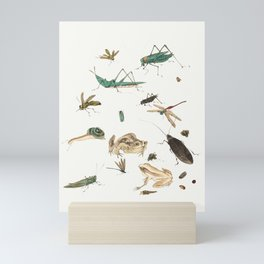 Insects, frogs and a snail Mini Art Print
