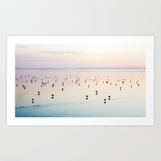 Silhouette Shore Birds Art Print