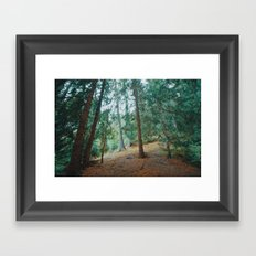 into the woods 01 Framed Art Print