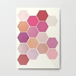 Shades of Pink Metal Print