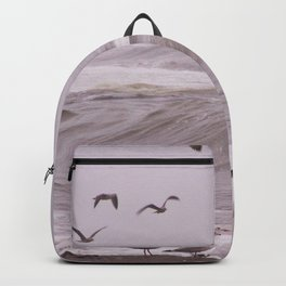 Seagulls and the Big Surf Backpack