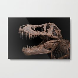 Tyrannosaurus rex on black Metal Print