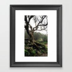 Fairy Tree Framed Art Print