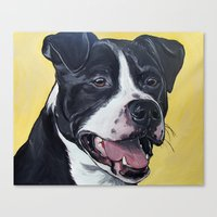 pit bull Canvas Prints featuring Pit Bull by WOOF Factory
