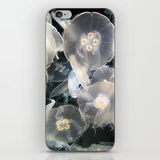 JellyFish Garden iPhone & iPod Skin